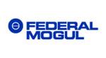 _0011_federal-mogul